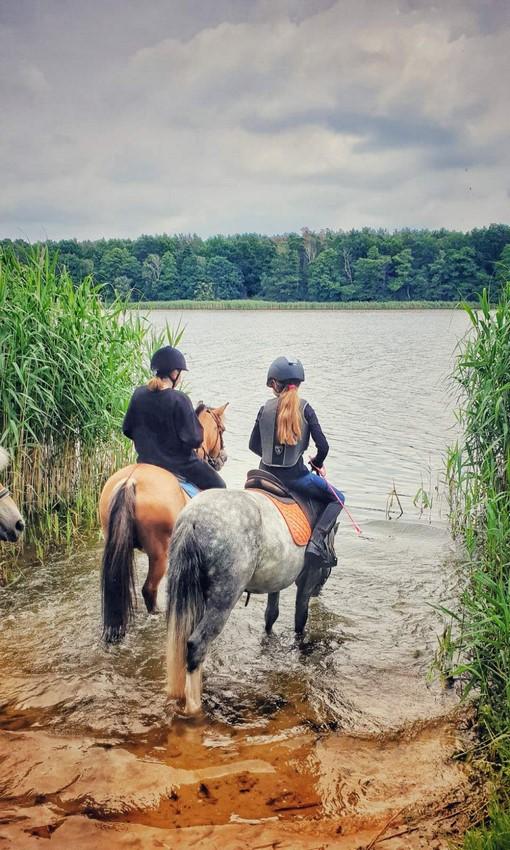 Obóz jeździecki 7-9 i 10-16 lat
